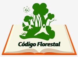 Relatório do Código Florestal está na pauta da Câmara